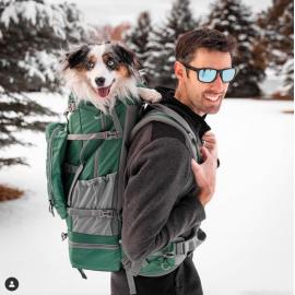 ® Rover 2   Big Dog