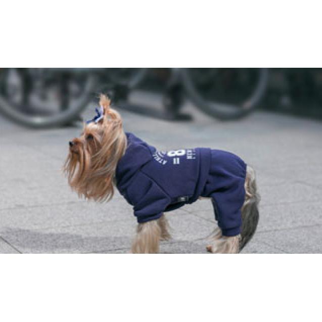 Спортивный костюм для собак Lion - красный