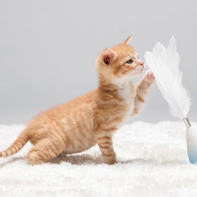 Игрушка-неваляшка для кошек от Pidan