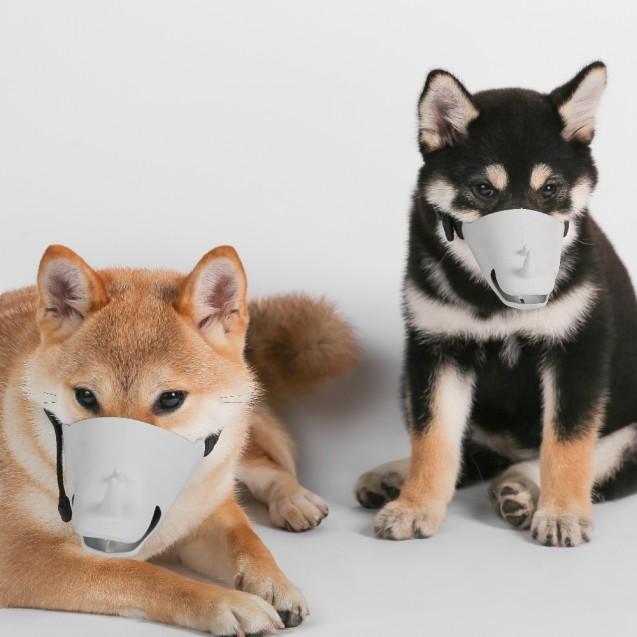 """Намордник для собаки """"Носорог"""" Pidan"""