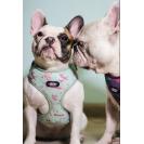 Шлейка для собак Nicovaer - мята