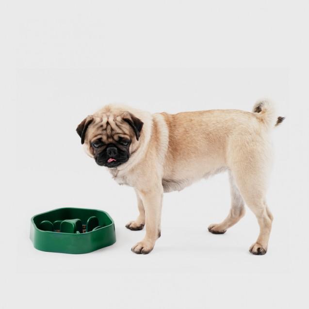 Кормушка для собак Oasis