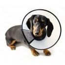 Воротник ветеринарный Triol L315-355*H145мм