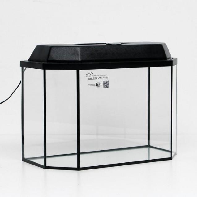 Аквариум панорамный с крышкой, 50 литров, 56 х 26 х 36/42 см, чёрный