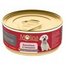 Влажный корм Molina для собак, цыпленок с говядиной в желе, 85 г