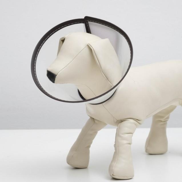 """Ветеринарный воротник """"Пижон Premium"""" №4, обхват шеи 26 см, высота 13,5 см"""